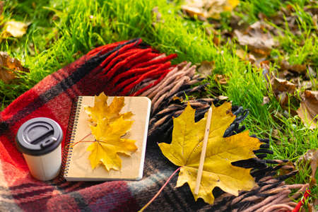 Leisure with a warm blanket and a cup of coffee in an autumn park. Autumn mood and state of mind.