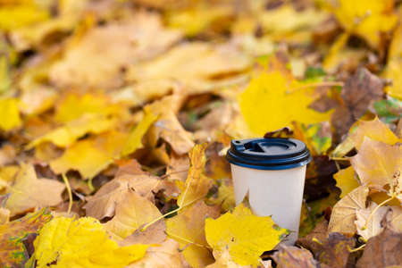 Close-up of a craft cup of hot coffee in fallen yellow leaves.