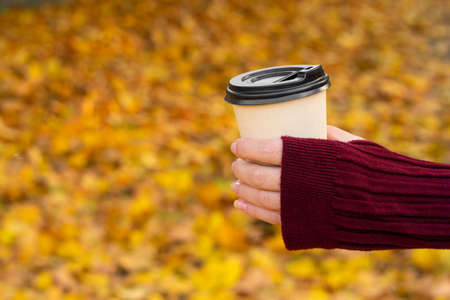 A cozy warm photo of a craft cup of hot coffee in hands against a background of fallen yellow leaves. Standard-Bild