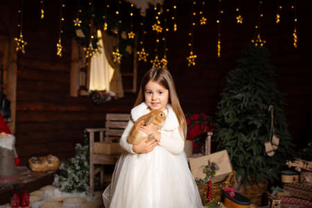 A little girl plays with her bunny friend on a fabulous Christmas night.