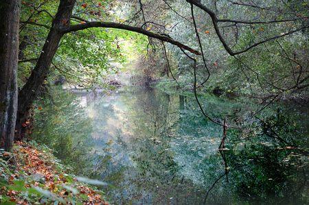 natur: Bella e autunno natur sul fiume specchi ... Archivio Fotografico