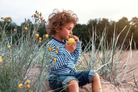 Small kid (boy, child) in a sailor's striped long-sleeve shirt and with curly hairs seats on the sand dune (sea beach) and eats an apple. Vintage tinting. Banco de Imagens