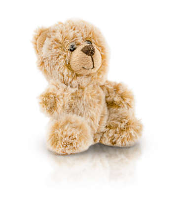 The bear toy is isolated on a white background. High quality photo