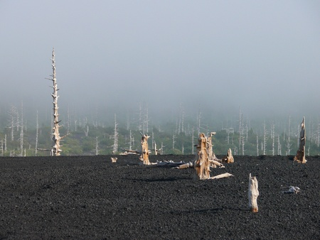 scoria: A slope of the volcano Tyatya