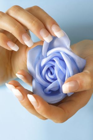 acrylics: Beautiful hands with French manicure. Soft-focused, low DOF, focus on rose