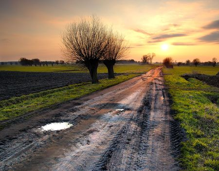 Road to the sun photo
