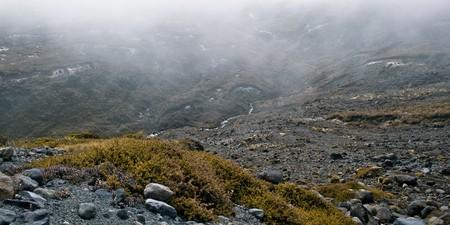 treed: Rocky valley, Mt Ruapehu, North Island, New Zealand