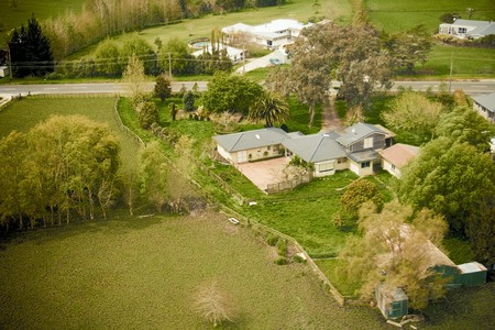 north shore: Green Housing among trees, North Shore, New Zealand, 2007