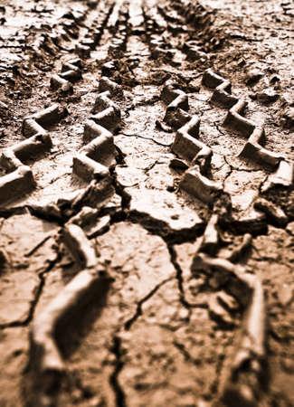 tyre tracks: Pista de neum�ticos sobre el terreno  Foto de archivo