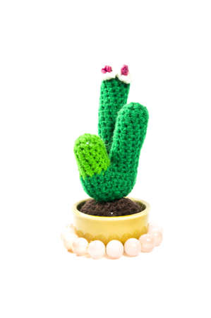 Cactus Knitted doll Stock Photo - 9839081