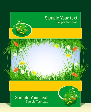 Frame with grass and field flowers for presentation something
