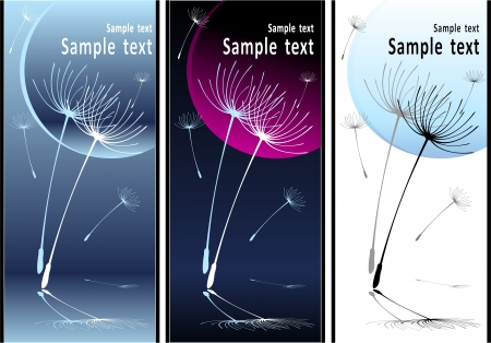 Set Abstract Composition soft dancing dandelion seeds Vector