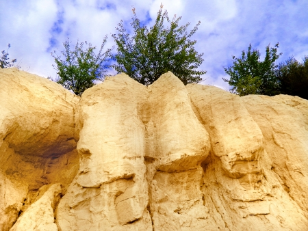 Landscape with sandy bluff, cover, trees, sky                                photo