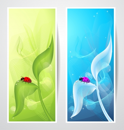 Creative banners with ladybird on leaf on green or blue abstract background