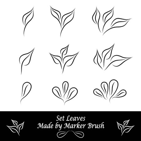 Set of leaves made by marker brushes in black