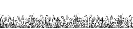 Background with seamless border in floral style black on white for banner or card or for decoration different things