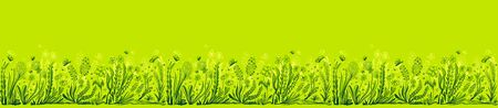Background with seamless border in floral style in green for banner or card or for decoration different things Illustration