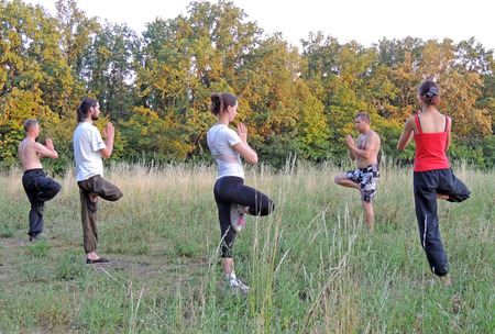 grassy plot: Outdoors qigong classes in the parks of Voronezh Editorial