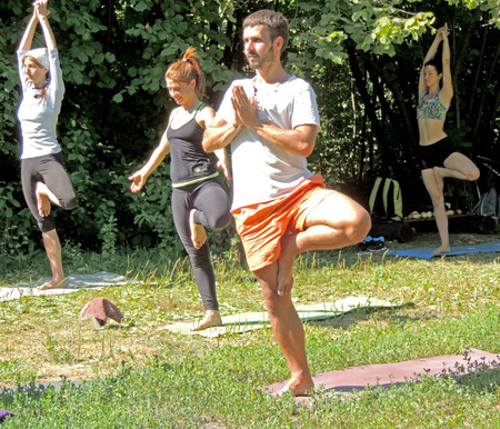 grassy plot: Young adult people perform yoga exercises in the park