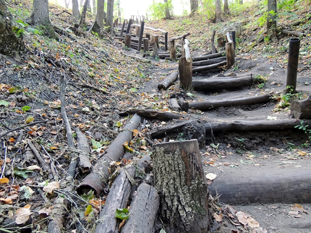 steps and staircases: Wooden stairs of path in the forest