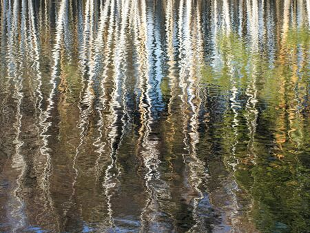 Trees reflected on the rippling surface of the reservoir