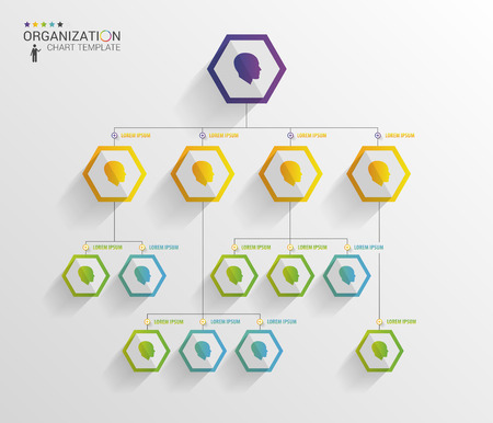 Modern organization chart template. Vector Illustration