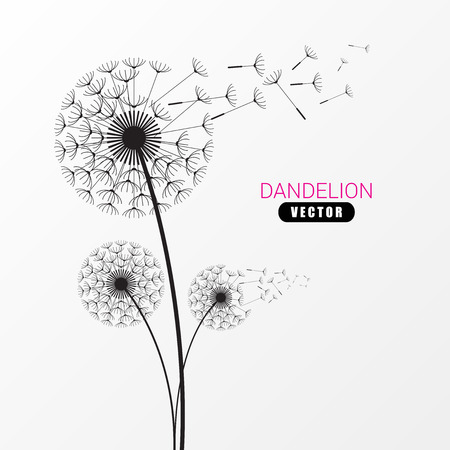 Dandelion silhouette. Flying dandelion buds. Modern design. Vector illustration
