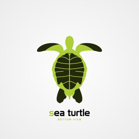 Green sea turtle. Bottom view. Modern symbol. Vector illustration