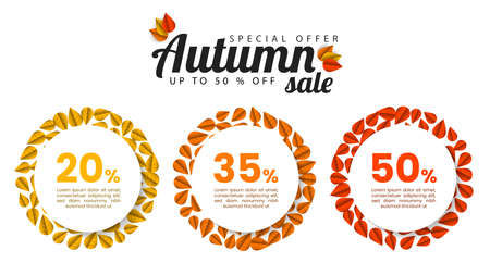 Autumn sale. Infographic design template with fall leaves. Vector illustration