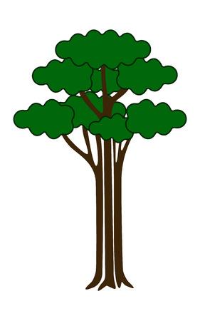 broadleaved tree: isolated simple tree, isolated green tree