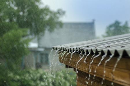 지붕에서 땅까지 비가 많이 내립니다.