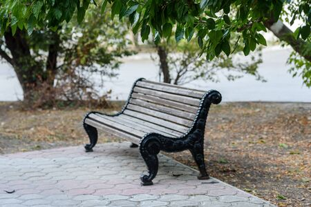 Bench for recreation in the Park-summer landscape