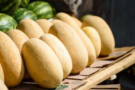 Melons ripe on the market counter-harvest season Standard-Bild
