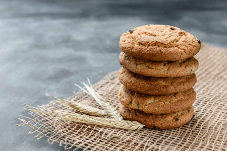 Homemade oatmeal cookies with raisins on a dark background Stok Fotoğraf
