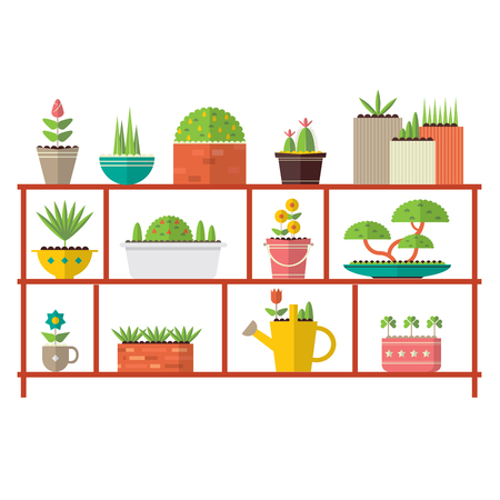 Various flower pot on the shelf