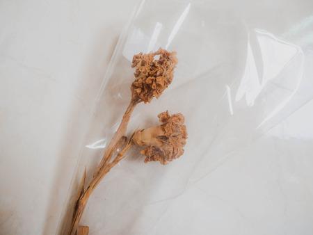 Dry flower mold