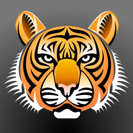 Realistic tiger snout front view