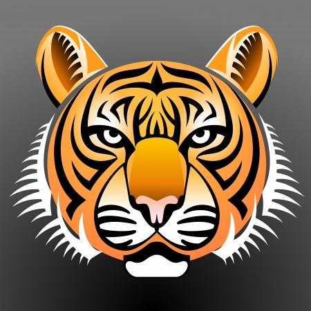 hocico: Tigre realista vista frontal hocico Vectores