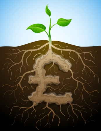 tuber: Pound sterling sign like root of plant  Roots and tuber in shape of pound symbol sprout  Qualitative vector  EPS-10  illustration for banking, financial industry, economy, accounting, etc