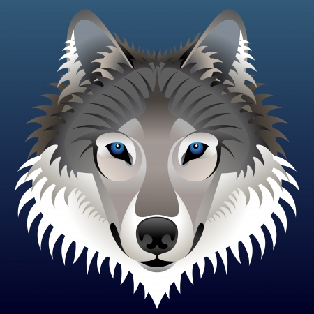 Realistic wolfs face  Wolf head front view  Qualitative vector  EPS-10  element for identity design, branding, tattoo and much more; Good illustration for circus, zoo, wildlife, nature, etc