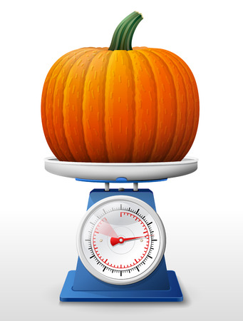 weighing scale: Pumpkin fruit on scale pan.