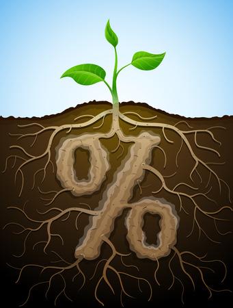 raíz de planta: El por ciento como raíz de la planta. Concepto de las raíces y tubérculos de germinación en forma de signo de porcentaje. Ilustración vectorial cualitativa para la banca, la industria financiera, venta, descuento, cálculo, etc. Vectores