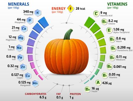 Las vitaminas y los minerales de la calabaza. Infografía sobre los nutrientes de la calabaza de invierno. Ilustración vectorial cualitativa acerca de calabaza, vitaminas, verduras, alimentos saludables, nutrientes, dieta, etc. Ilustración de vector