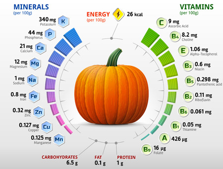 Vitamins and minerals of pumpkin. Infographics about nutrients in winter squash. Qualitative vector illustration about pumpkin, vitamins, vegetables, health food, nutrients, diet, etc