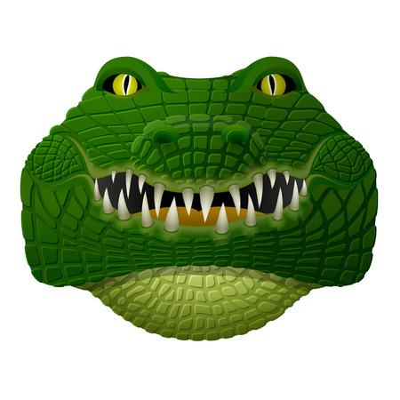 Realistisch krokodil gezicht kijkt vooruit. Vooraanzicht van geïsoleerde alligator hoofd. Kwalitatieve vector illustratie voor dierentuin, sport mascotte, circus, het wild, natuur, etc