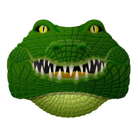Realistic crocodile face looks ahead. Front view of isolated alligator head. Qualitative vector illustration for zoo, sports mascot, circus, wildlife, nature, etc
