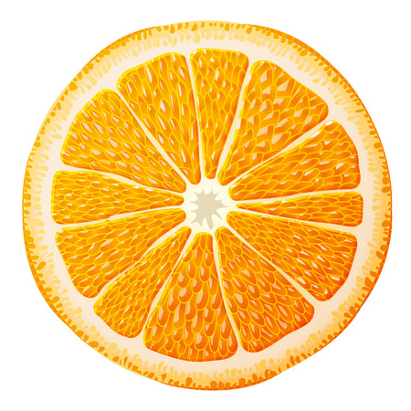 morsel: Orange slice close up. Section of orange fruit isolated on white background. Qualitative vector illustration for food, agriculture, fruits, cooking, gastronomy, etc