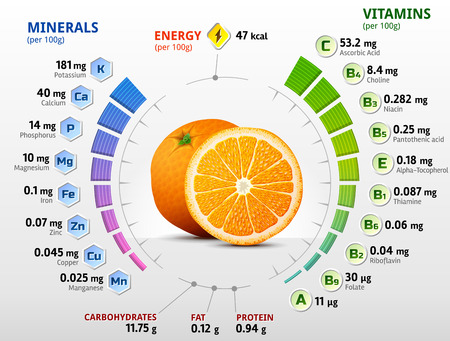 Vitamins and minerals of orange fruit. Infographics about nutrients in orange. Qualitative vector illustration about orange, vitamins, fruits, health food, nutrients, diet, etc  イラスト・ベクター素材