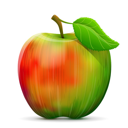 apple leaf: Apple fruit close up. Apple with leaf isolated on white background. Qualitative vector illustration about apple agriculture fruits cooking gastronomy etc Illustration
