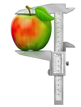 Vertical caliper measures apple fruit. Concept of apple and measuring tool. Qualitative vector illustration about apple agriculture fruits cooking gastronomy etc
